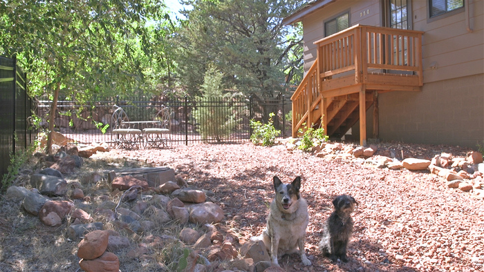 Villa Voice – Dog Friendly Accommodations